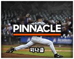 피나클 Pinnacle